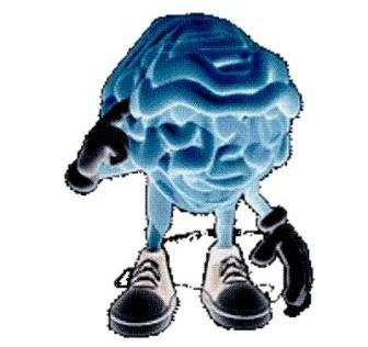 Los recuerdos pueden confundir al cerebro a la hora de tomar una decisión