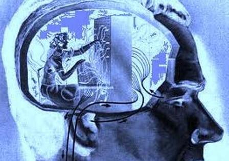Descubren la parte del cerebro que nos ayuda a resistir las tentaciones