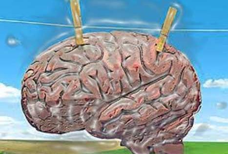 """Para estar bien despiertos durante el día hace falta un buen """"lavado de cerebro"""" nocturno"""