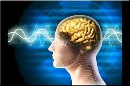 Detectan la red cerebral responsable de la fatiga mental en la esclerosis múltiple