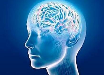 Cuatro avances que cambiarán el estudio del cerebro y sus enfermedades