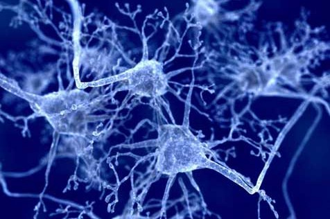 Parkinson: prometedor avance en terapia génica