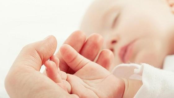 La epo protege el cerebro de los prematuros