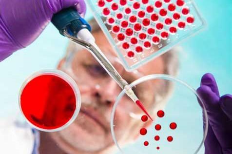 """Un nuevo método detecta """"mutaciones ocultas"""" que causan trastornos cerebrales"""