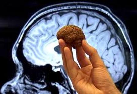 Chocolate para potenciar la memoria