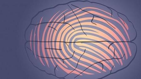 La huella dactilar del cerebro