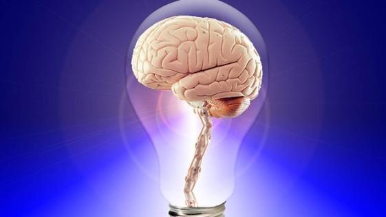 Cosas sorprendentes sobre el funcionamiento del cerebro