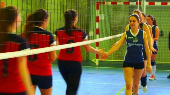 Voleibol: la categoría sénior crece