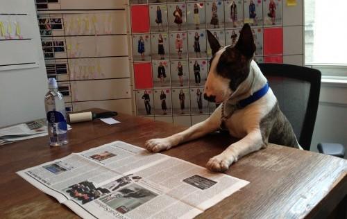 El perro de Marc Jacobs edita una revista