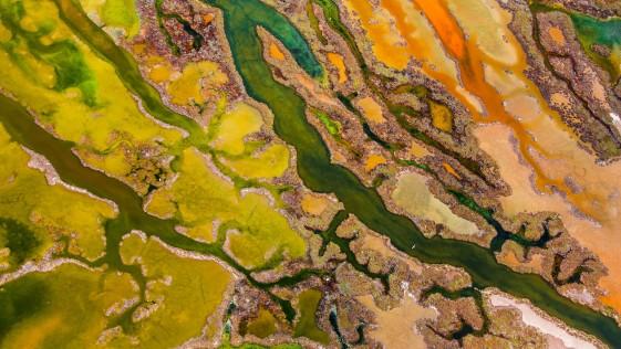 Un español consigue la mejor foto aérea del año