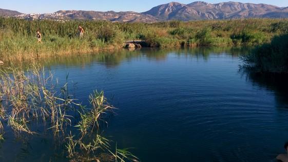 La Marjal: no es Doñana, es la costa de Valencia y Alicante
