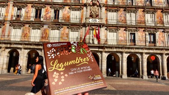 Madrid, Plaza Mayor de las legumbres
