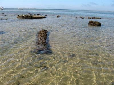 Identidades sumergidas en un fuerte tragado por el mar